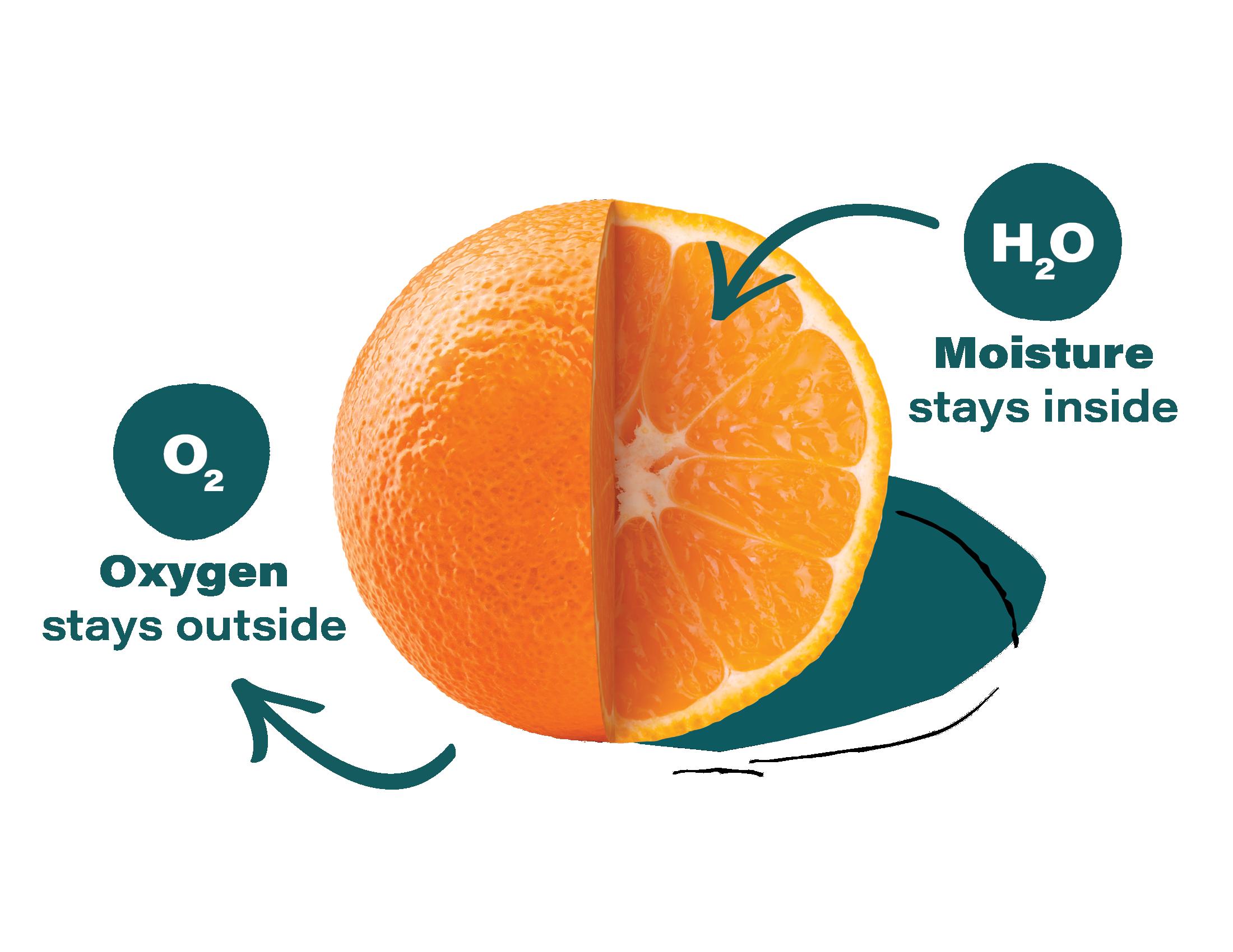 Apeel-Mandarin-Produce-Diagrams-2020-FINAL