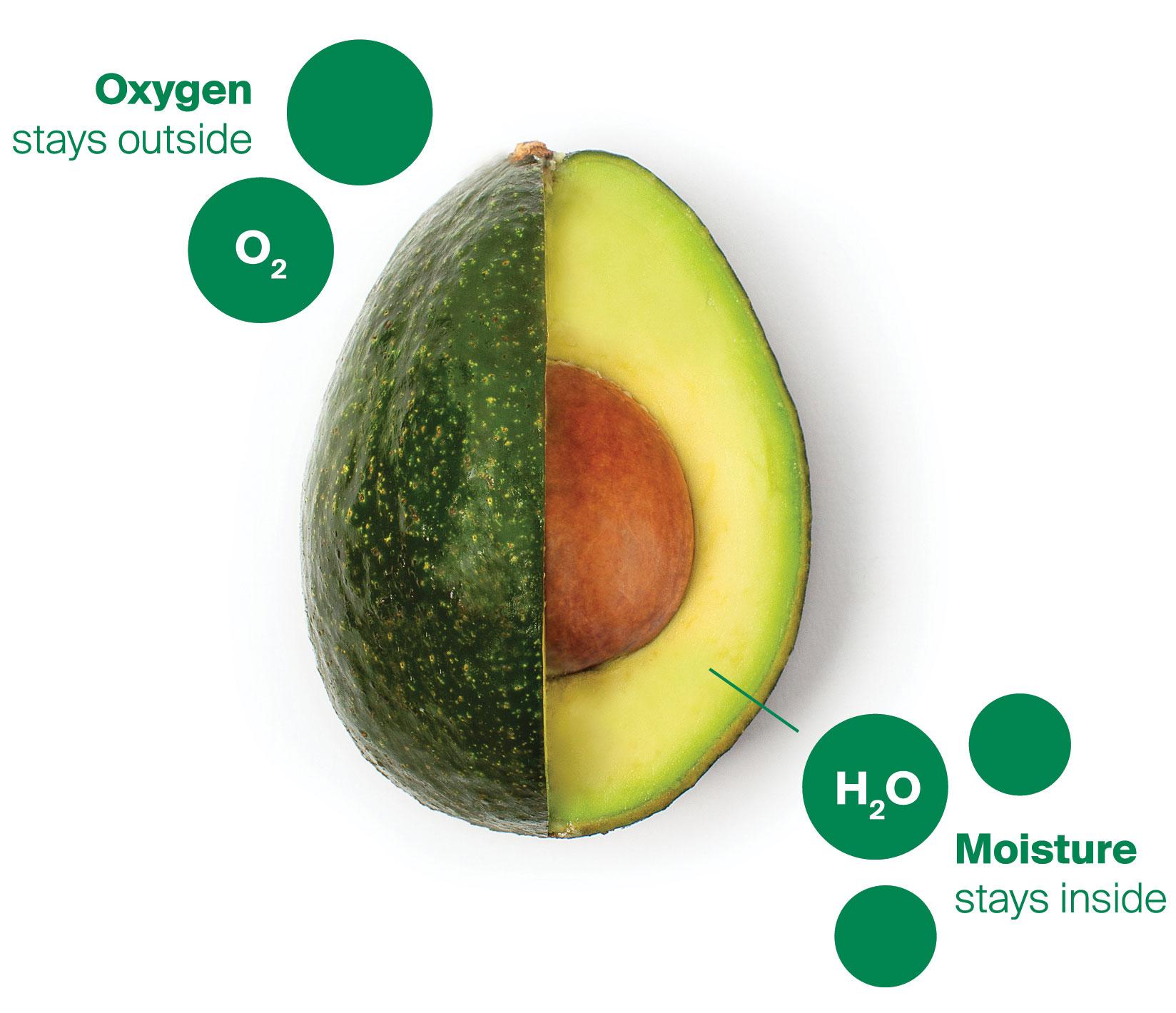 Avocado-Produce-Diagram