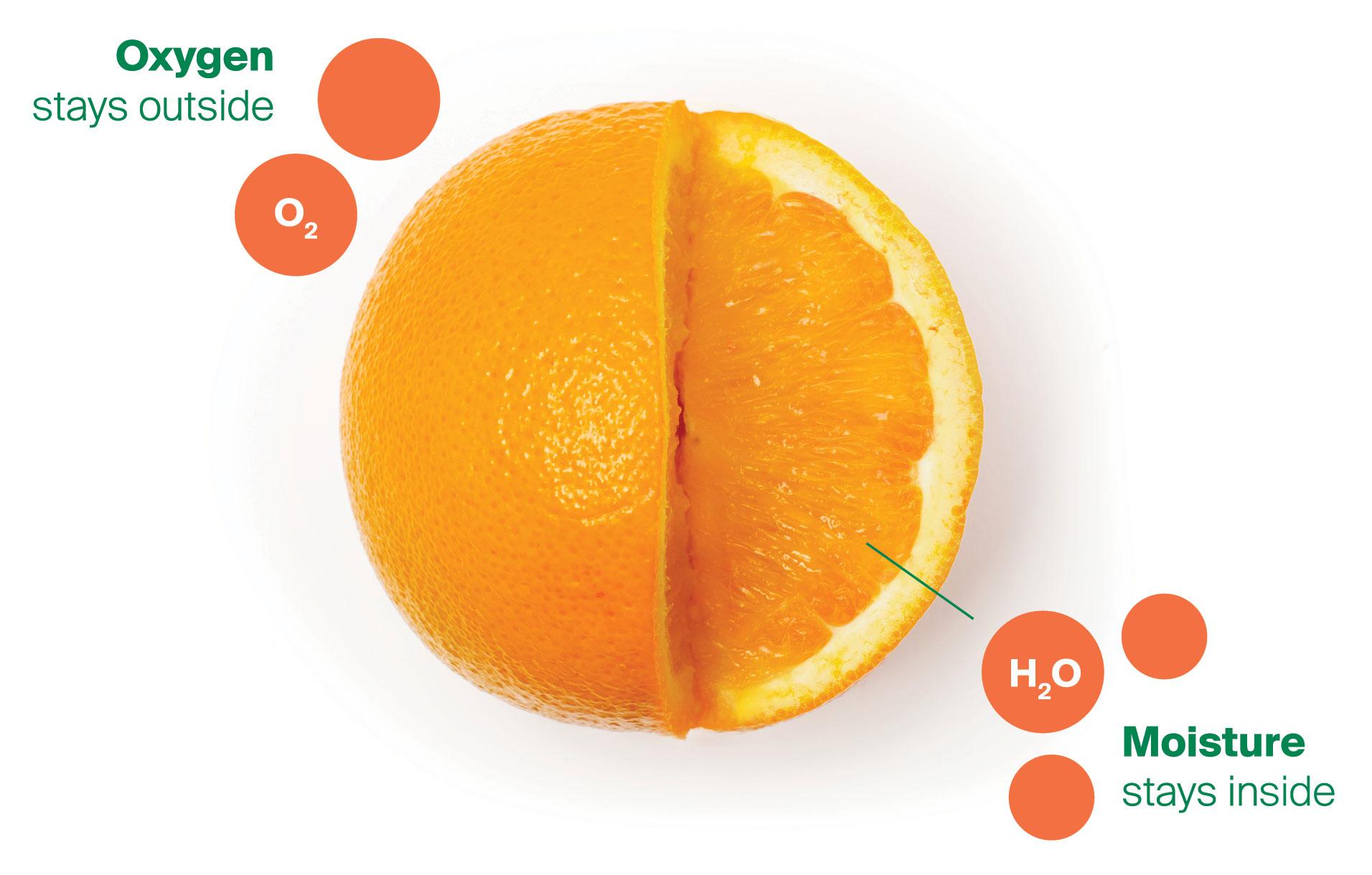 Orange-Produce-Diagram